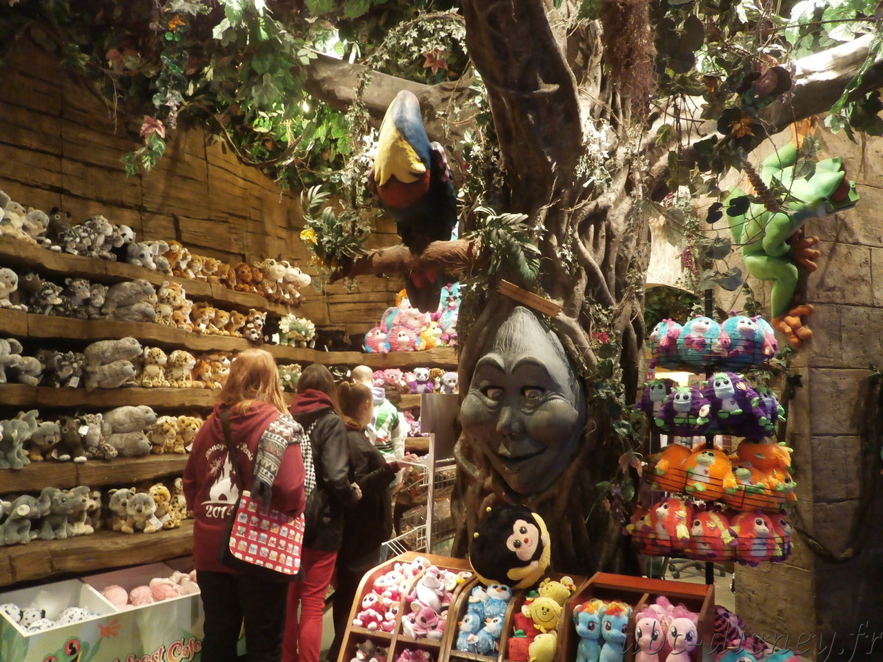 R rain forest store